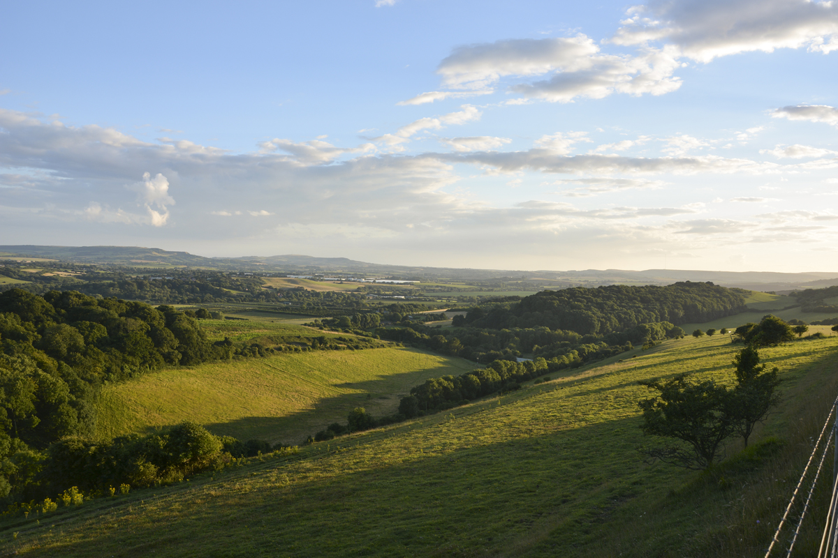 View from Brading Down