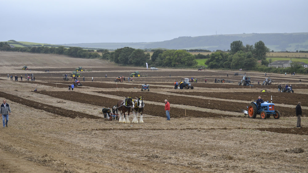 Isle of Wight Ploughing Match 2013